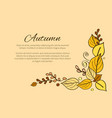 autumn season greeting card decorated by bouquet vector image