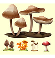 Different kind of mushrooms vector image vector image