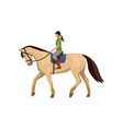 horsewoman riding roan horse isolated against vector image vector image