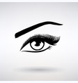 icon female eye with long eyelashes vector image vector image