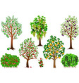 trees and shrubs vector image vector image