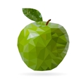 triangle big shiny green apple vector image