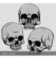 Vintage skulls set