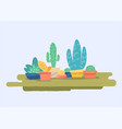 cute home plants vector image vector image
