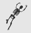halloween human skeleton vector image vector image