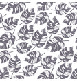 monstera tropical leaf vector image vector image