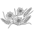 decorative cornflower and wheat vector image vector image