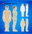human body set vector image vector image