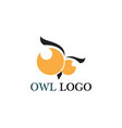 owl head bird logo template animal vector image