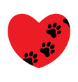 red heart with paw prints vector image vector image