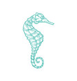 sketch seahorse oceanairum animal art line icon vector image