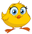 smiling chick vector image vector image
