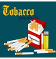 smoking tobacco cigarette with filter in red box vector image