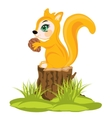 Squirrel sits on hemp vector image vector image