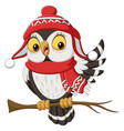 cute owl cartoon wearing a scarf and christmas hat vector image vector image