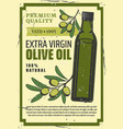 extra virgin olive oil bottle vector image vector image
