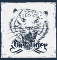 grunge tiger hand drawn vector image vector image