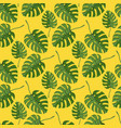 monstera plant seamless pattern on a yellow vector image