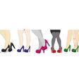 The nice legs of women vector image