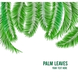 Tropical palm tree background banner vector image