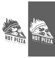 set of monochrome pizza logos vector image
