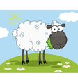 Black Sheep Cartoon Character vector image vector image