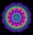 colourful mandala art vector image