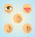 senses icons vector image