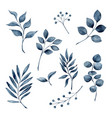 watercolor frozen leaves collection vector image
