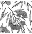 black and white botanical pattern of clover vector image vector image