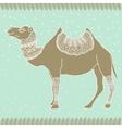 Camel Egypt tender vector image vector image