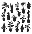 house plants silhouettes vector image