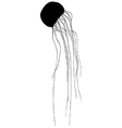 Jellyfish silhouette vector image vector image
