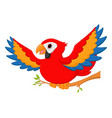 macaw bird cartoon waving vector image