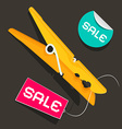 Sale Labels Peg with Sale Sticker and Tag vector image vector image