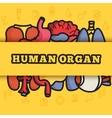 set flat human organs icons concept backgro vector image