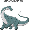cartoon brachiasaurus isolated on white background vector image vector image