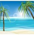 01 Sea palms vector image vector image