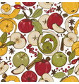 apples spices and berries vector image vector image