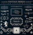Calligraphic heraldic decor elements vintage vector image vector image
