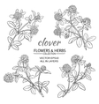 clover set vector image vector image