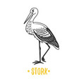 stork black and white objects vector image