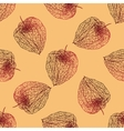 Abstract seamless pattern with Physalis vector image