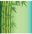 background with bamboo leaves and stems vector image