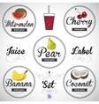fruit juice Detailed label set vector image vector image
