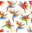 seamless pattern colorful strelitzia collection vector image vector image