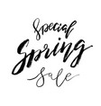 special spring sale - hand drawn inspiration vector image