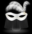 white carnival half-mask and feathers vector image vector image