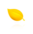 Yellow leaf on white background vector image vector image
