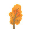 autumn tree with dry leaves sign isolated vector image